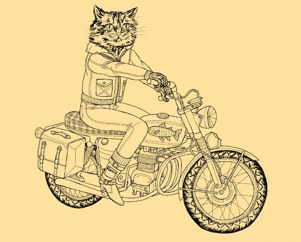 Kittybikerlg