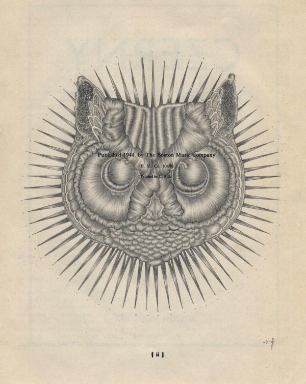 Owlfacebig