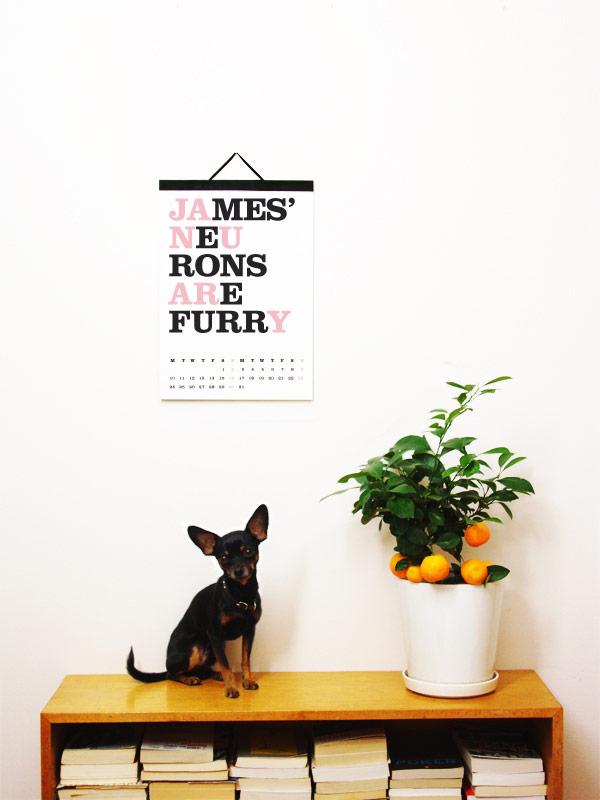 Cats-2011-Luka