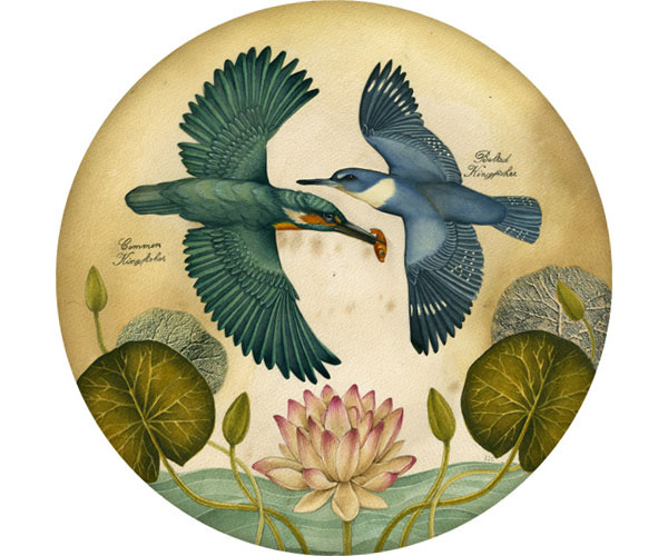 Halcyon_days