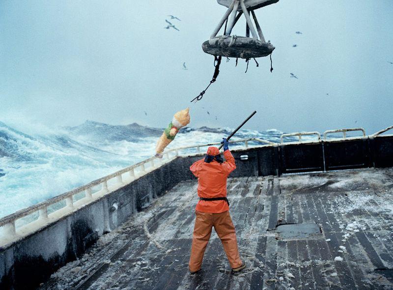 Bering_Sea_Birthday