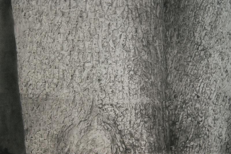 Treeform_det1