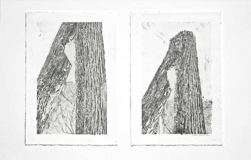 Natural-gates-(diptych)