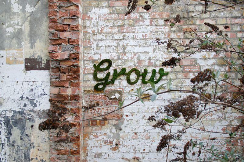 Anna_garforth_grow