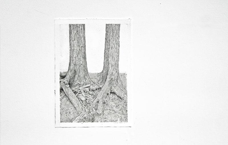 Treelationship
