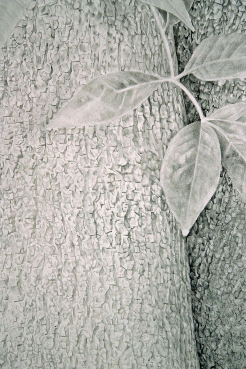 Treeform-II_det