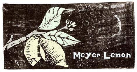 Meyerlemon