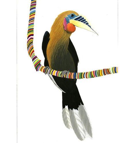 Rufousneckedhornbill